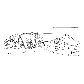 ours-illustration-laurianemiara-soridewear-carre
